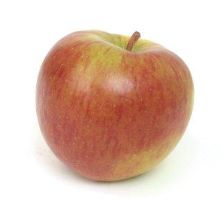 apple-braeburn1